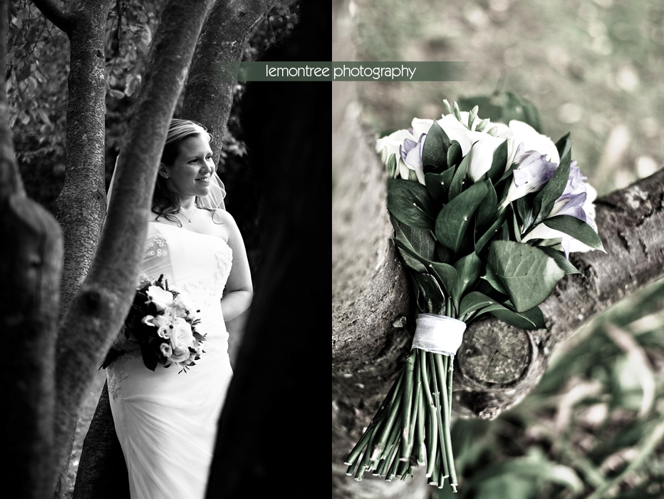 weddings in winchester by lemontree photography