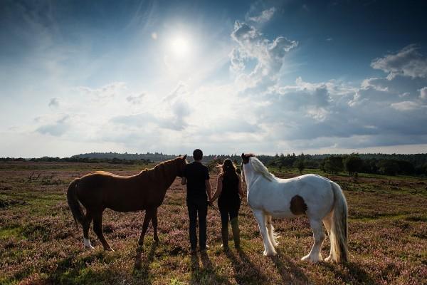Jo & Dave's Equine Photography Pre-wedding Portraits