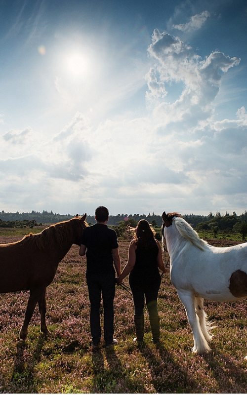 Jo & Dave's Equine Photography Pre-wedding Portraits